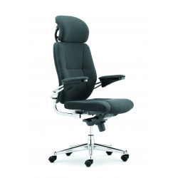 Executive Office Chair in...